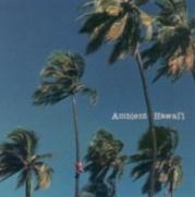 ambienthawaii1_hawaiian.jpg